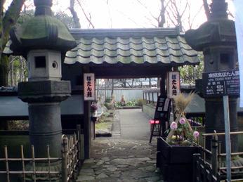 Ueno_peony_1002_a00