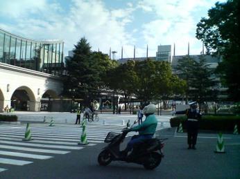 Tokyokeiba_1